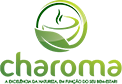 Sistema de vendas diretas e marketing multinível Maxnivel - Charoma